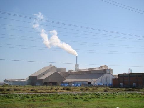 Os impactos ambientais dos processos econômicos é pauta central na Agenda 21