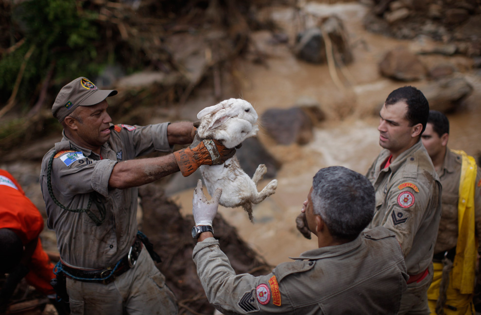Deslizamentos de terra no Brasil (2/3)